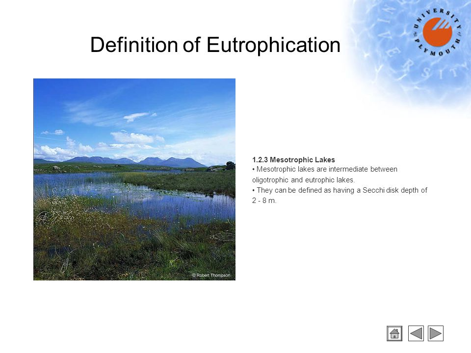 1.2.4 Dystrophic Lakes Dystrophic lakes contain humic acids leached from decaying aquatic vegetation in the watershed.