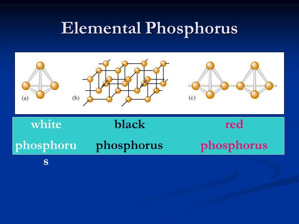 Elemental Phosphorus white phosphoru s black phosphorus red phosphorus