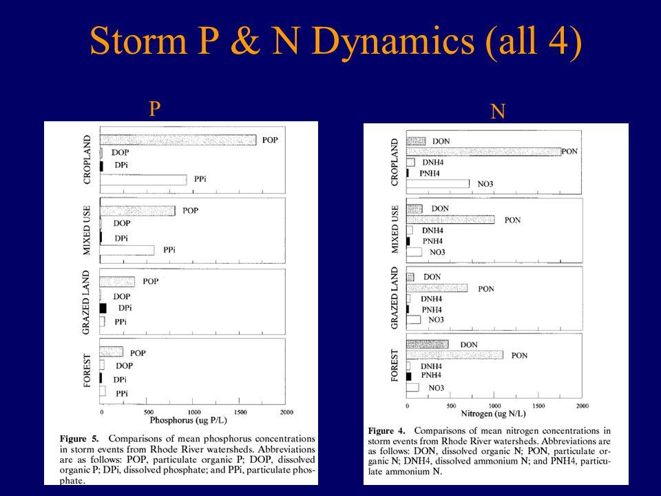 Storm P & N Dynamics (all 4) P N