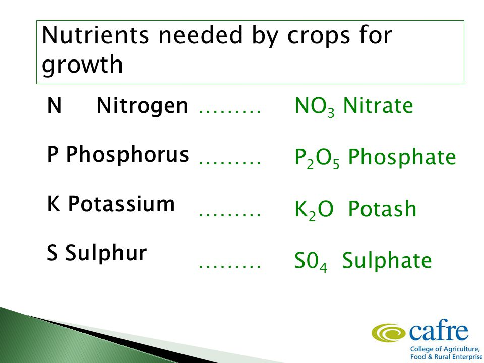 N Nitrogen P Phosphorus K Potassium S Sulphur ………NO 3 Nitrate ………P 2 O 5 Phosphate ………K 2 O Potash ………S0 4 Sulphate Nutrients needed by crops for growth