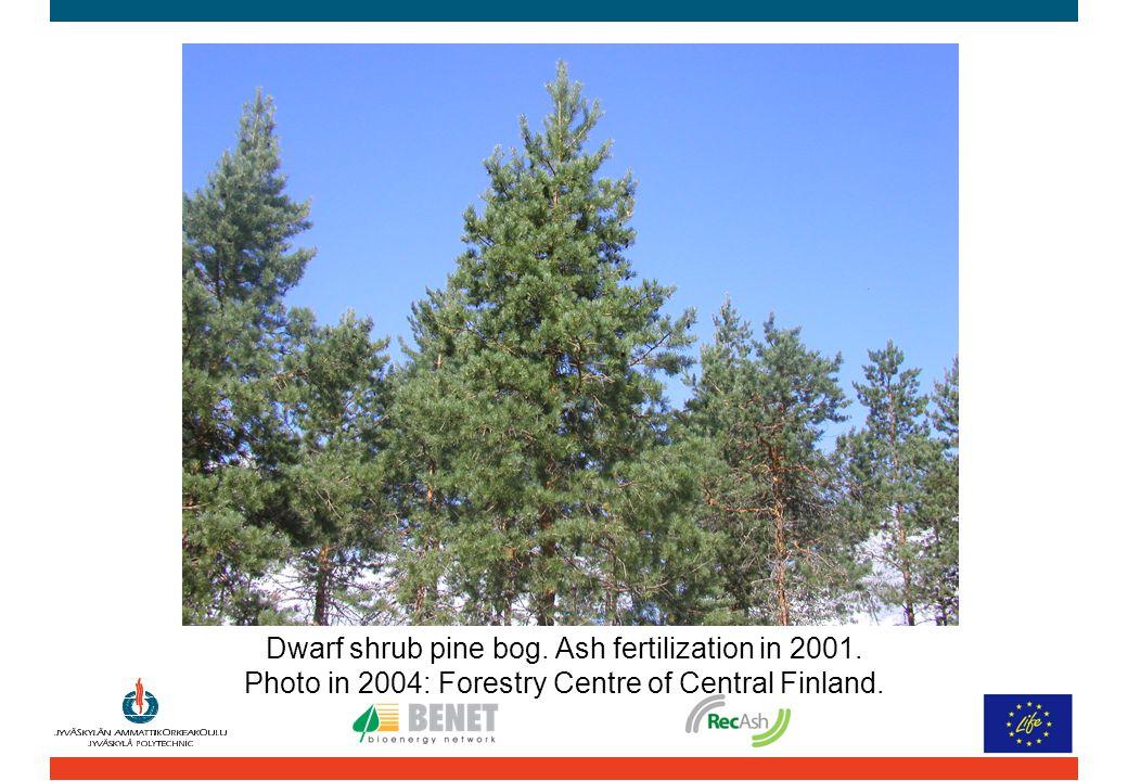 Dwarf shrub pine bog. Ash fertilization in 2001. Photo in 2004: Forestry Centre of Central Finland.