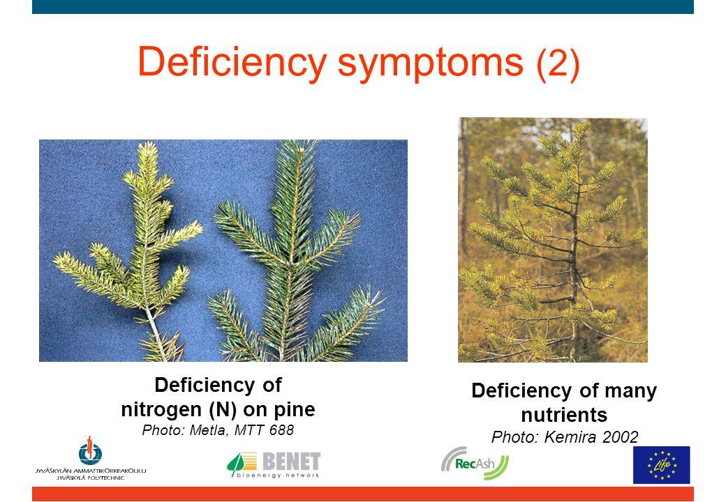 Deficiency symptoms (2) Deficiency of nitrogen (N) on pine Photo: Metla, MTT 688 Deficiency of many nutrients Photo: Kemira 2002