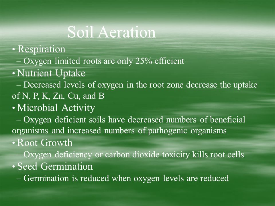 Soil Aeration Respiration – Oxygen limited roots are only 25% efficient Nutrient Uptake – Decreased levels of oxygen in the root zone decrease the uptake of N, P, K, Zn, Cu, and B Microbial Activity – Oxygen deficient soils have decreased numbers of beneficial organisms and increased numbers of pathogenic organisms Root Growth – Oxygen deficiency or carbon dioxide toxicity kills root cells Seed Germination – Germination is reduced when oxygen levels are reduced