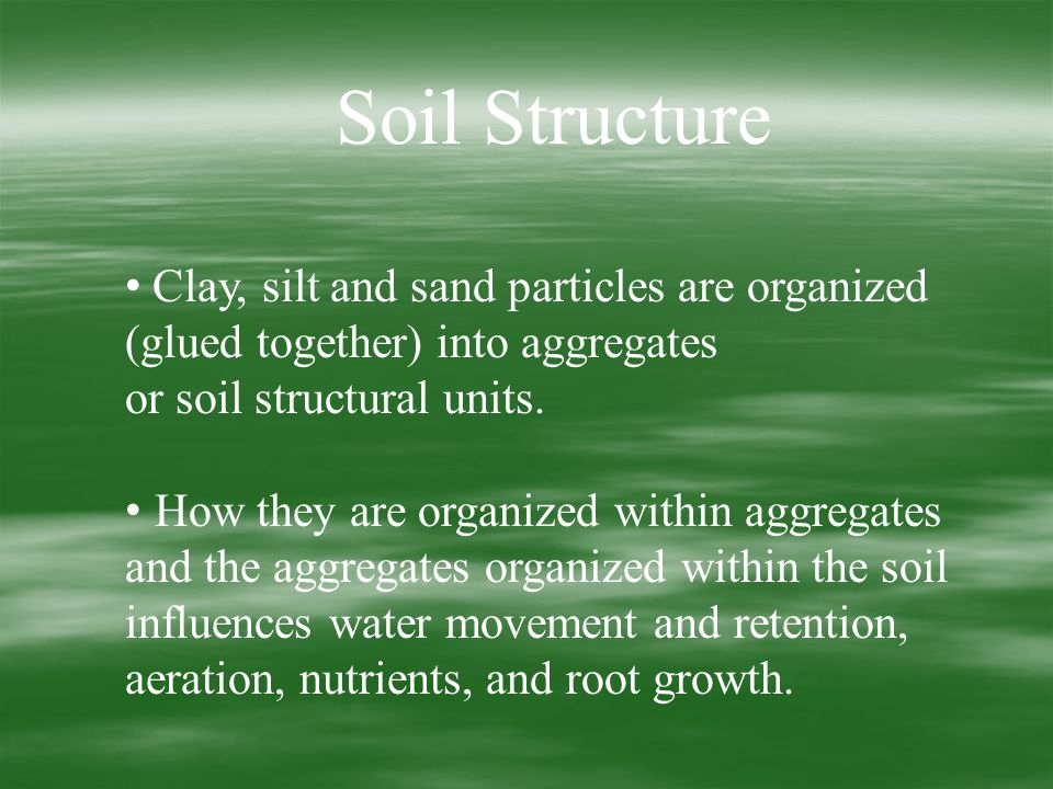 Soil Structure Clay, silt and sand particles are organized (glued together) into aggregates or soil structural units.