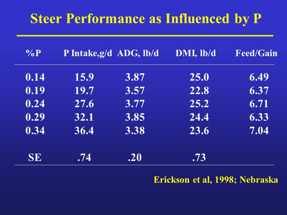 Steer Performance as Influenced by P %PP Intake,g/dADG, lb/d DMI, lb/d Feed/Gain 0.14 15.9 3.87 25.0 6.49 0.19 19.7 3.57 22.8 6.37 0.24 27.6 3.77 25.2 6.71 0.29 32.1 3.85 24.4 6.33 0.34 36.4 3.38 23.6 7.04 SE.74.20.73 Erickson et al, 1998; Nebraska