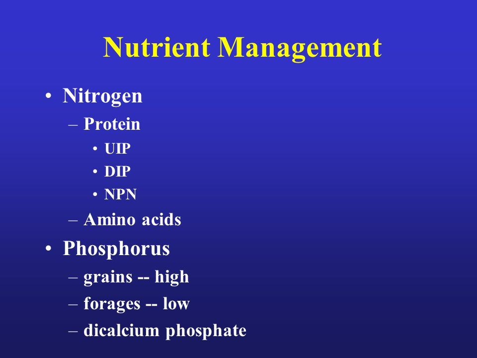 Nutrient Management Nitrogen –Protein UIP DIP NPN –Amino acids Phosphorus –grains -- high –forages -- low –dicalcium phosphate