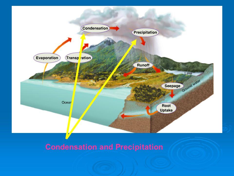 Condensation and Precipitation