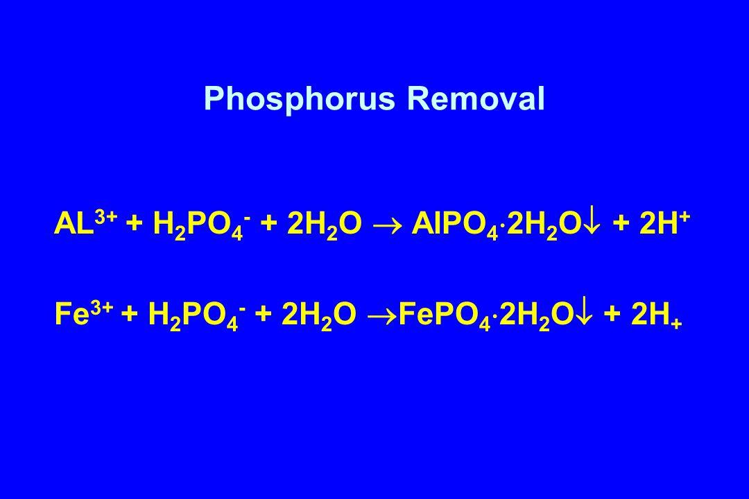 Phosphorus Removal AL 3+ + H 2 PO 4 - + 2H 2 O  AlPO 4  2H 2 O  + 2H + Fe 3+ + H 2 PO 4 - + 2H 2 O  FePO 4  2H 2 O  + 2H +
