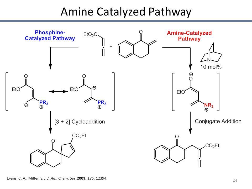 Amine Catalyzed Pathway Evans, C. A.; Miller, S. J. J. Am. Chem. Soc.2003, 125, 12394. 24
