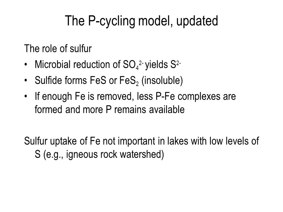The P-cycling model, updated The role of sulfur Microbial reduction of SO 4 2- yields S 2- Sulfide forms FeS or FeS 2 (insoluble) If enough Fe is removed, less P-Fe complexes are formed and more P remains available Sulfur uptake of Fe not important in lakes with low levels of S (e.g., igneous rock watershed)