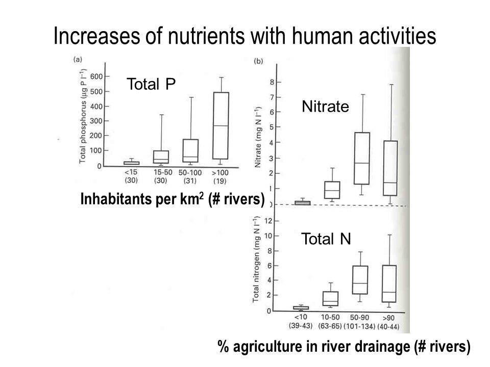 Increases of nutrients with human activities % agriculture in river drainage (# rivers) Inhabitants per km 2 (# rivers) Total P Nitrate Total N
