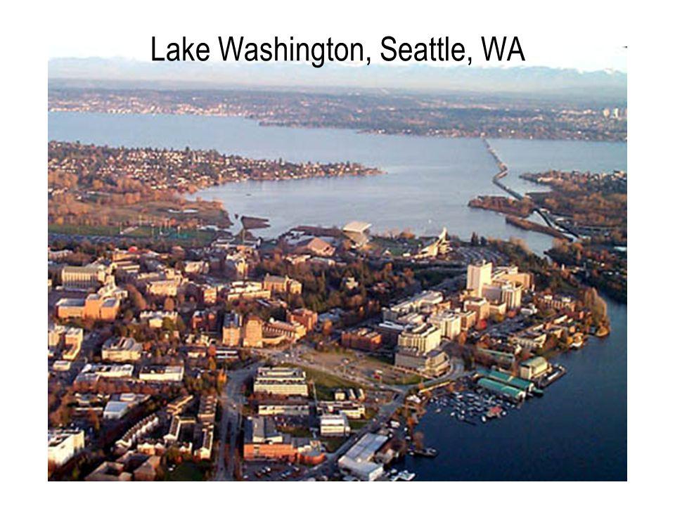 Lake Washington, Seattle, WA