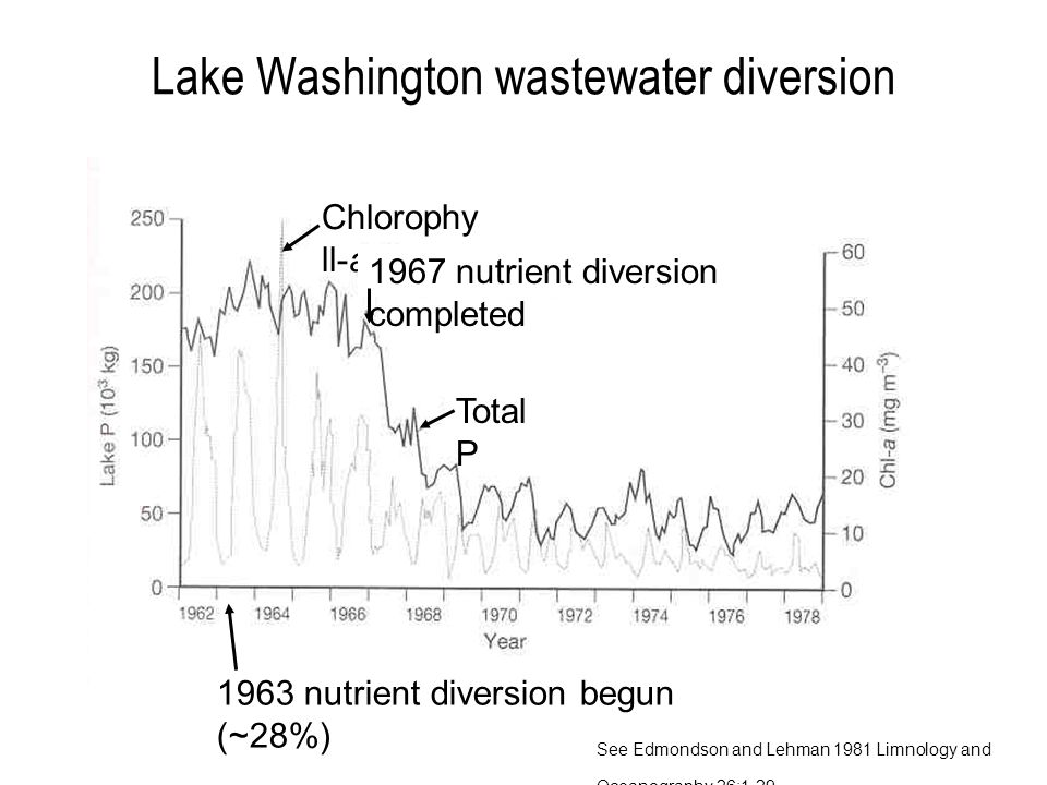 Lake Washington wastewater diversion Total P Chlorophy ll-a 1967 nutrient diversion completed 1963 nutrient diversion begun (~28%) See Edmondson and Lehman 1981 Limnology and Oceanography 26:1-29