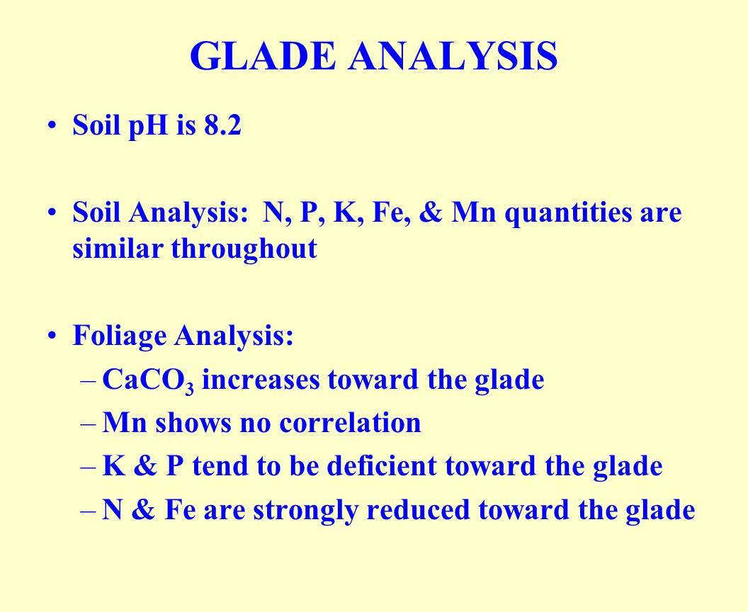 GLADE ANALYSIS Soil pH is 8.2 Soil Analysis: N, P, K, Fe, & Mn quantities are similar throughout Foliage Analysis: –CaCO 3 increases toward the glade –Mn shows no correlation –K & P tend to be deficient toward the glade –N & Fe are strongly reduced toward the glade
