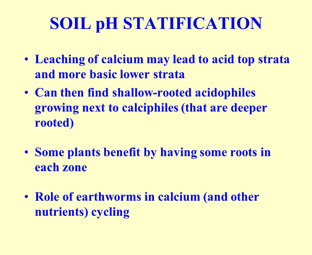 SOIL pH STATIFICATION Leaching of calcium may lead to acid top strata and more basic lower strata Can then find shallow-rooted acidophiles growing next to calciphiles (that are deeper rooted) Some plants benefit by having some roots in each zone Role of earthworms in calcium (and other nutrients) cycling