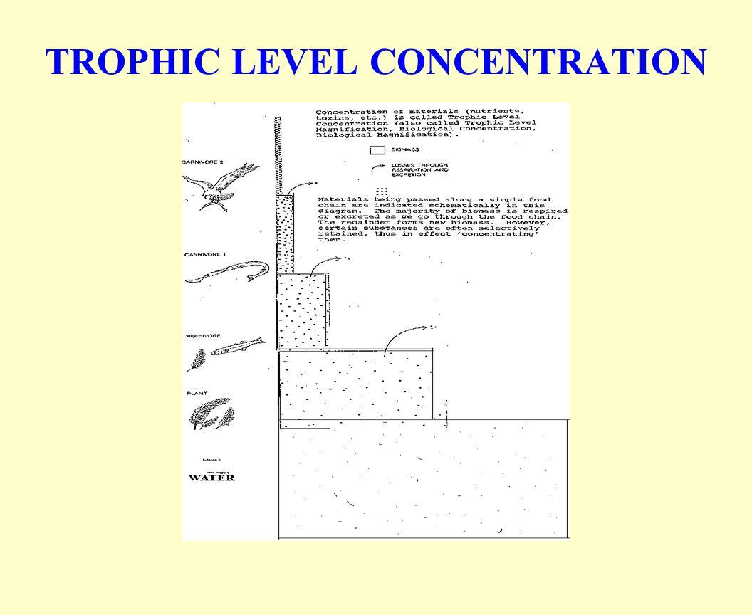 TROPHIC LEVEL CONCENTRATION