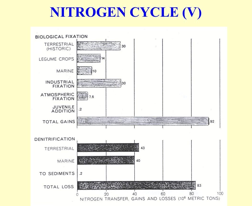 NITROGEN CYCLE (V)