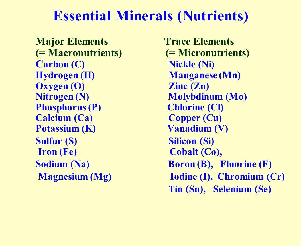 Essential Minerals (Nutrients) Major Elements Trace Elements (= Macronutrients) (= Micronutrients) C arbon (C) Nickle (Ni) Hydrogen (H) Manganese (Mn) Oxygen (O) Zinc (Zn) Nitrogen (N) Molybdinum (Mo) Phosphorus (P) Chlorine (Cl) Calcium (Ca) Copper (Cu) Potassium (K) Vanadium (V) Sulfur (S) Silicon (Si) Iron (Fe) Cobalt (Co), Sodium (Na) Boron (B), Fluorine (F) Magnesium (Mg) Iodine (I), Chromium (Cr) T in (Sn), Selenium (Se)