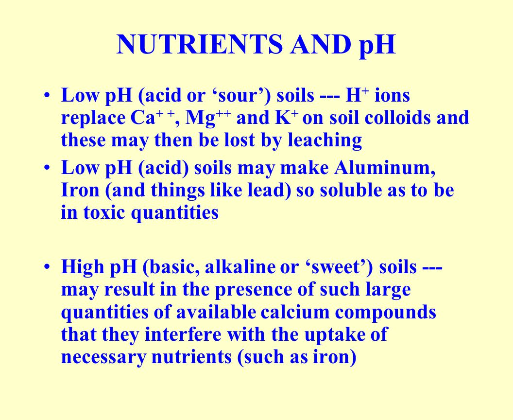 NUTRIENTS AND pH Low pH (acid or 'sour') soils --- H + ions replace Ca + +, Mg ++ and K + on soil colloids and these may then be lost by leaching Low pH (acid) soils may make Aluminum, Iron (and things like lead) so soluble as to be in toxic quantities High pH (basic, alkaline or 'sweet') soils --- may result in the presence of such large quantities of available calcium compounds that they interfere with the uptake of necessary nutrients (such as iron)