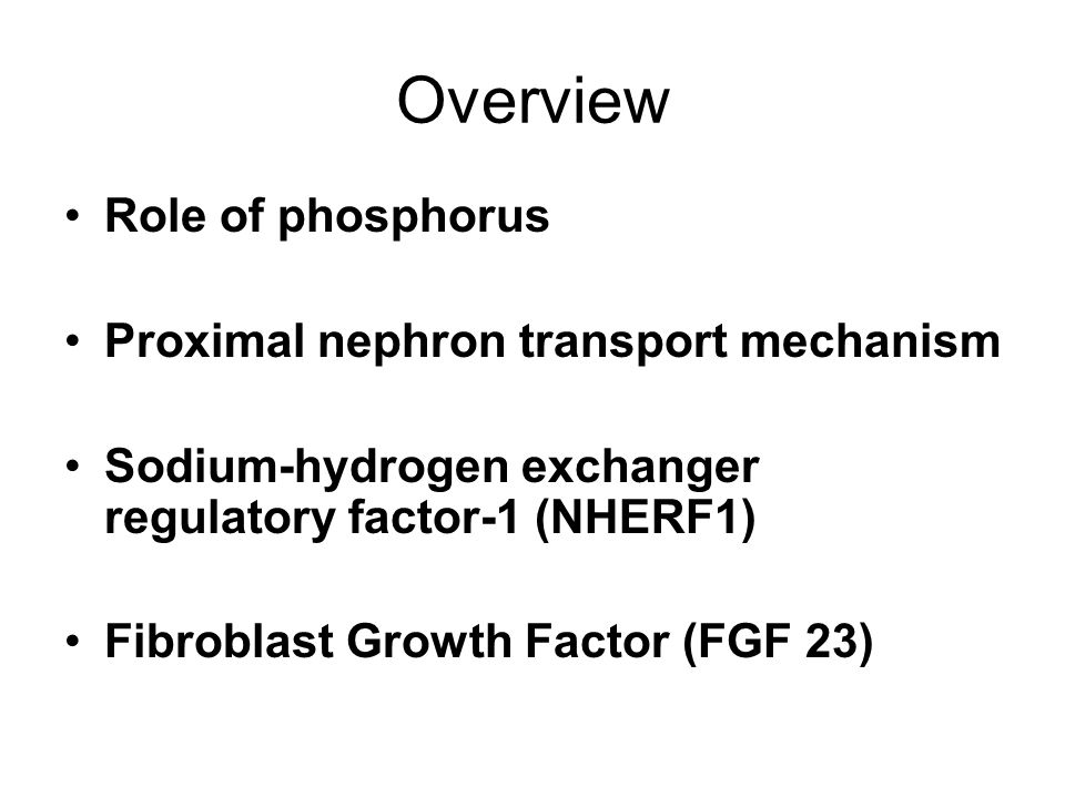 Overview Role of phosphorus Proximal nephron transport mechanism Sodium-hydrogen exchanger regulatory factor-1 (NHERF1) Fibroblast Growth Factor (FGF