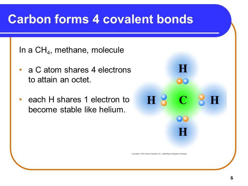 5 Carbon forms 4 covalent bonds In a CH 4, methane, molecule a C atom shares 4 electrons to attain an octet. each H shares 1 electron to become stable