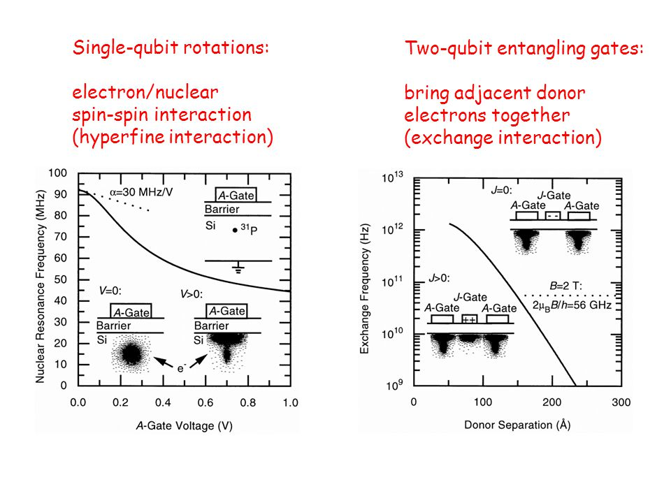 Single-qubit rotations: electron/nuclear spin-spin interaction (hyperfine interaction) Two-qubit entangling gates: bring adjacent donor electrons toge