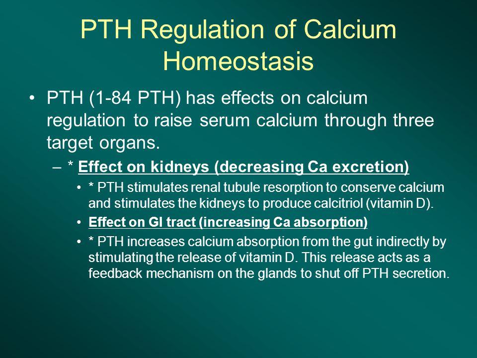 PTH Regulation of Calcium Homeostasis PTH (1-84 PTH) has effects on calcium regulation to raise serum calcium through three target organs.