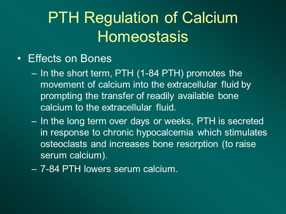 PTH Regulation of Calcium Homeostasis Effects on Bones –In the short term, PTH (1-84 PTH) promotes the movement of calcium into the extracellular fluid by prompting the transfer of readily available bone calcium to the extracellular fluid.