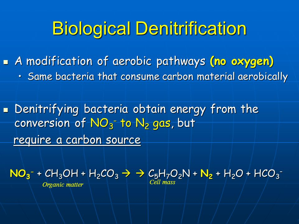 Biological Denitrification A modification of aerobic pathways (no oxygen) A modification of aerobic pathways (no oxygen) Same bacteria that consume carbon material aerobicallySame bacteria that consume carbon material aerobically Denitrifying bacteria obtain energy from the conversion of NO 3 - to N 2 gas, but Denitrifying bacteria obtain energy from the conversion of NO 3 - to N 2 gas, but require a carbon source require a carbon source NO 3 - + CH 3 OH + H 2 CO 3   C 5 H 7 O 2 N + N 2 + H 2 O + HCO 3 - NO 3 - + CH 3 OH + H 2 CO 3   C 5 H 7 O 2 N + N 2 + H 2 O + HCO 3 - Organic matter Cell mass
