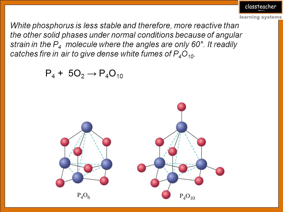 White phosphorus is less stable and therefore, more reactive than the other solid phases under normal conditions because of angular strain in the P 4 molecule where the angles are only 60°.