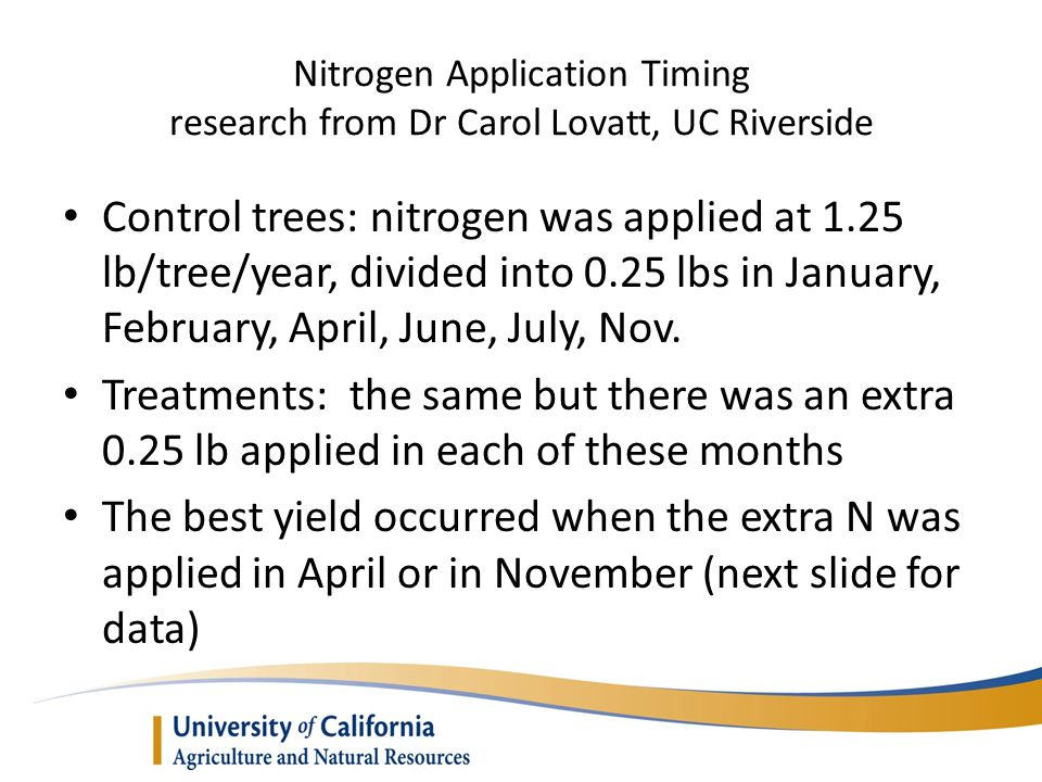 Nitrogen Application Timing research from Dr Carol Lovatt, UC Riverside Control trees: nitrogen was applied at 1.25 lb/tree/year, divided into 0.25 lbs in January, February, April, June, July, Nov.