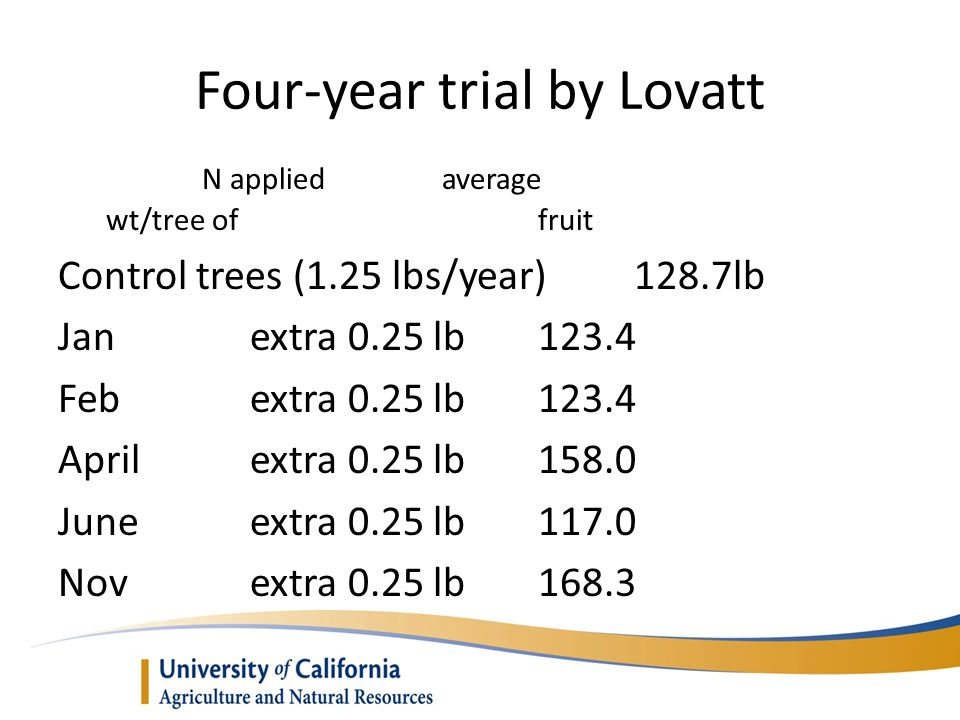 Four-year trial by Lovatt N appliedaverage wt/tree of fruit Control trees (1.25 lbs/year)128.7lb Janextra 0.25 lb123.4 Febextra 0.25 lb123.4 Aprilextra 0.25 lb158.0 Juneextra 0.25 lb117.0 Novextra 0.25 lb168.3