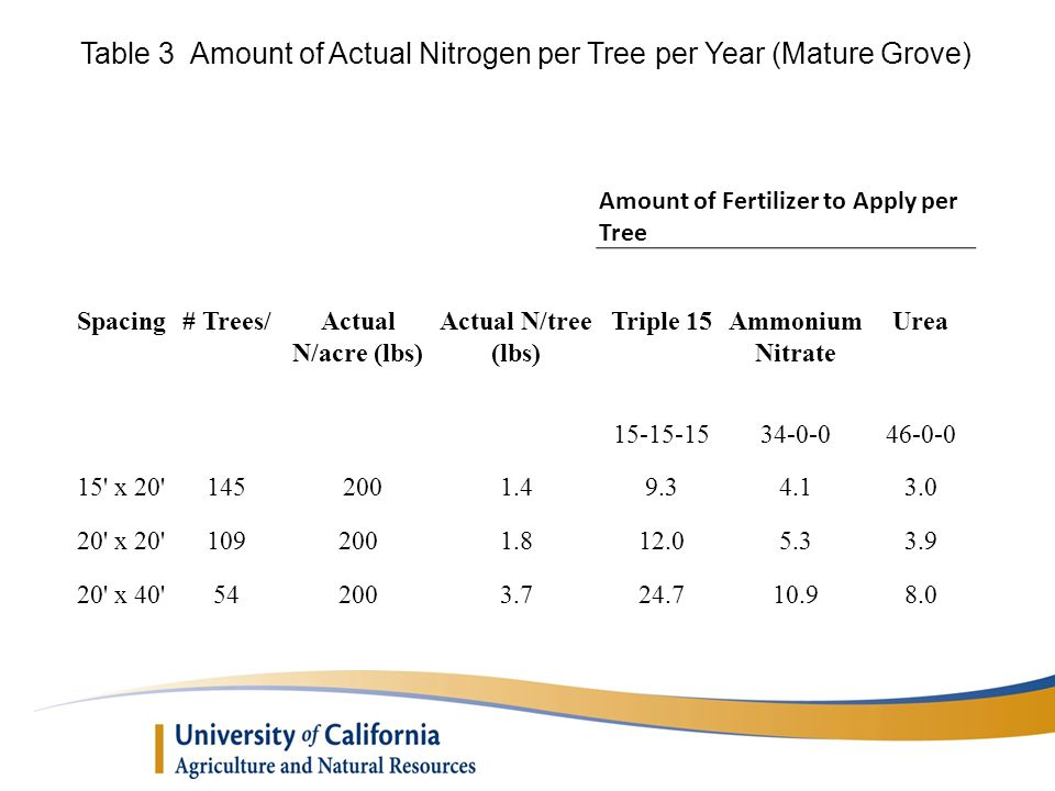 Amount of Fertilizer to Apply per Tree Spacing# Trees/Actual N/acre (lbs) Actual N/tree (lbs) Triple 15Ammonium Nitrate Urea 15-15-1534-0-046-0-0 15 x 20 1452001.49.34.13.0 20 x 20 1092001.812.05.33.9 20 x 40 542003.724.710.98.0 Table 3 Amount of Actual Nitrogen per Tree per Year (Mature Grove)