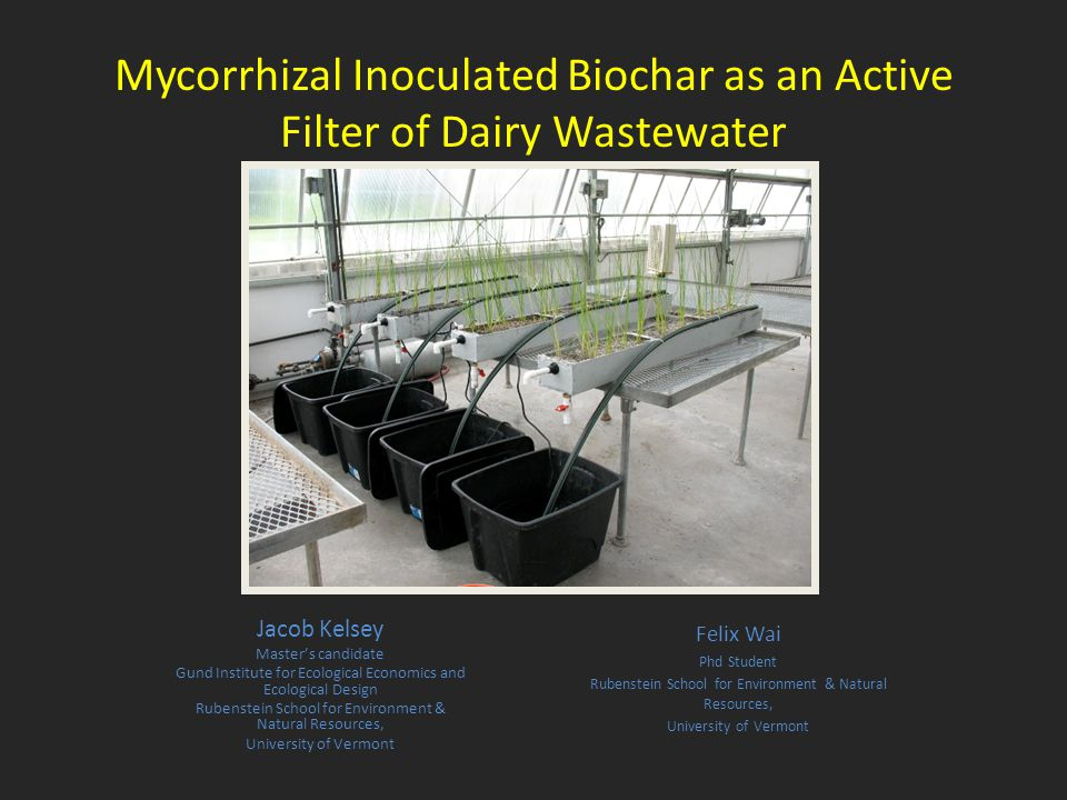 Mycorrhizal Inoculated Biochar as an Active Filter of Dairy Wastewater Jacob Kelsey Master's candidate Gund Institute for Ecological Economics and Ecological Design Rubenstein School for Environment & Natural Resources, University of Vermont Felix Wai Phd Student Rubenstein School for Environment & Natural Resources, University of Vermont