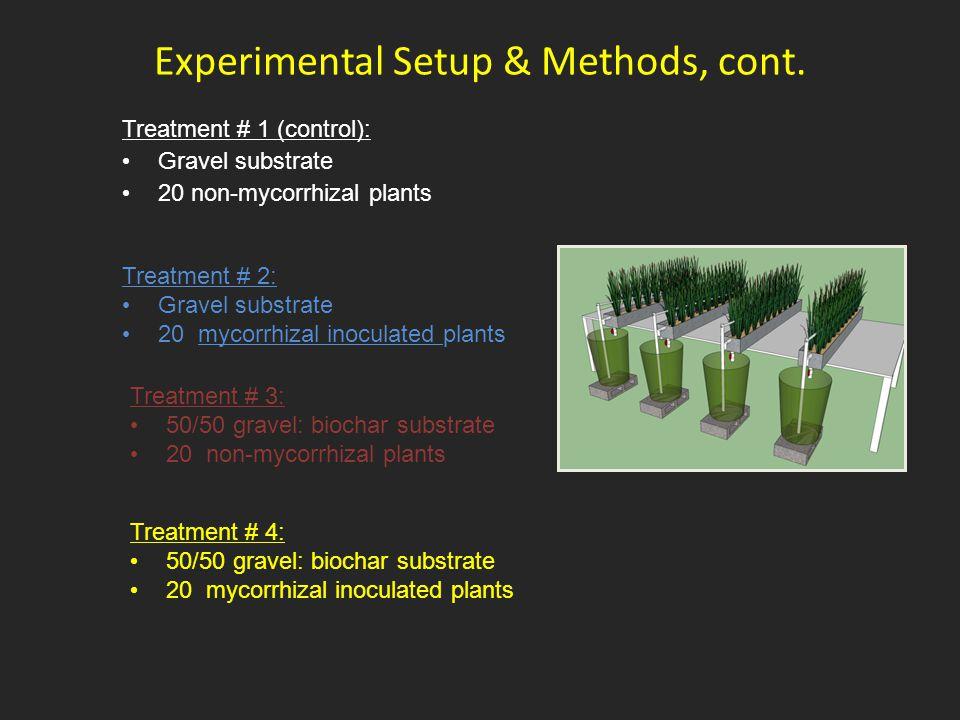 Experimental Setup & Methods, cont. Treatment # 1 (control): Gravel substrate 20 non-mycorrhizal plants Treatment # 2: Gravel substrate 20 mycorrhizal