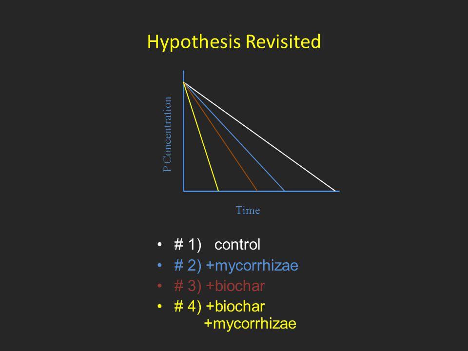 Hypothesis Revisited Time P Concentration # 1) control # 2) +mycorrhizae # 3) +biochar # 4) +biochar +mycorrhizae