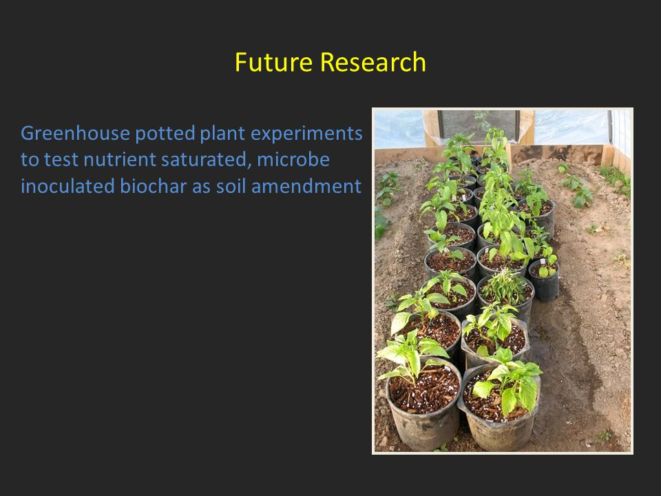 Greenhouse potted plant experiments to test nutrient saturated, microbe inoculated biochar as soil amendment Future Research