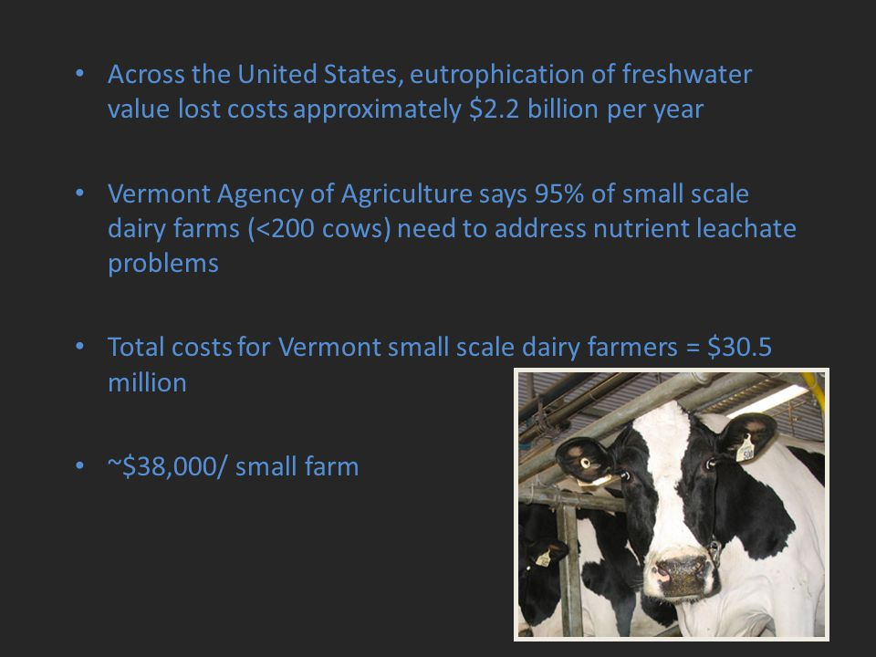 Across the United States, eutrophication of freshwater value lost costs approximately $2.2 billion per year Vermont Agency of Agriculture says 95% of small scale dairy farms (<200 cows) need to address nutrient leachate problems Total costs for Vermont small scale dairy farmers = $30.5 million ~$38,000/ small farm