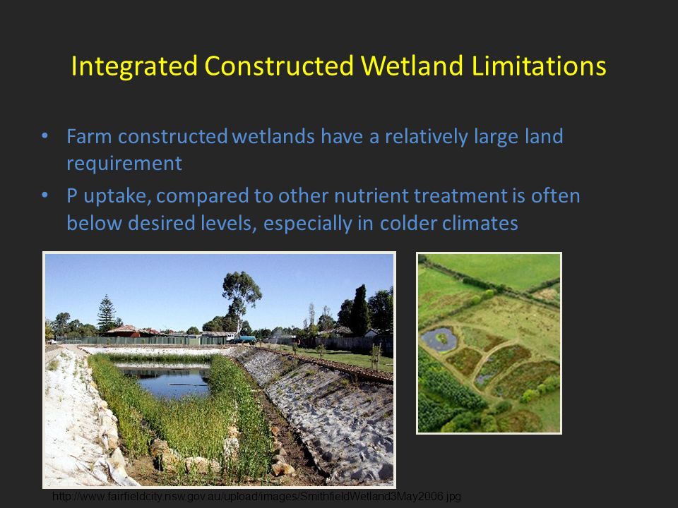 Integrated Constructed Wetland Limitations Farm constructed wetlands have a relatively large land requirement P uptake, compared to other nutrient treatment is often below desired levels, especially in colder climates http://www.fairfieldcity.nsw.gov.au/upload/images/SmithfieldWetland3May2006.jpg
