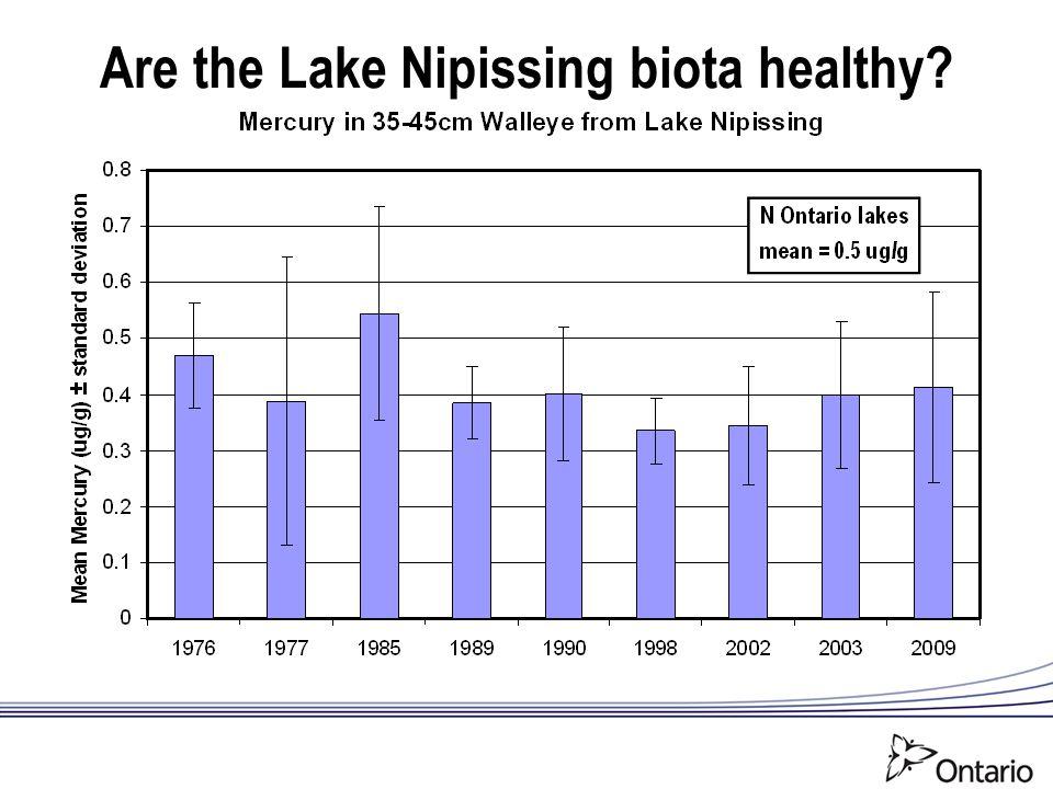 Are the Lake Nipissing biota healthy?