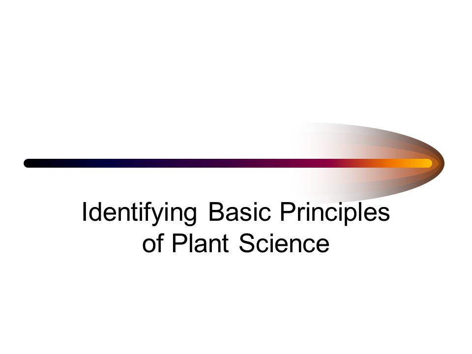 Identifying Basic Principles of Plant Science