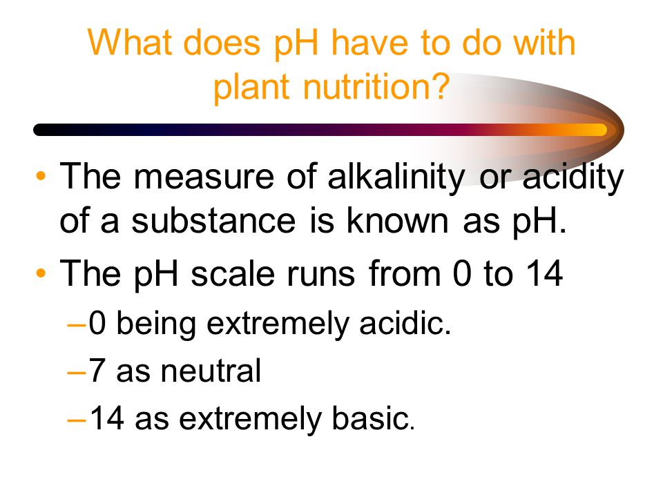 What does pH have to do with plant nutrition.