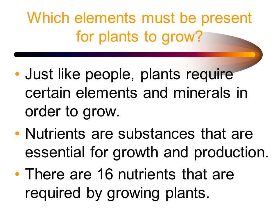 Which elements must be present for plants to grow.