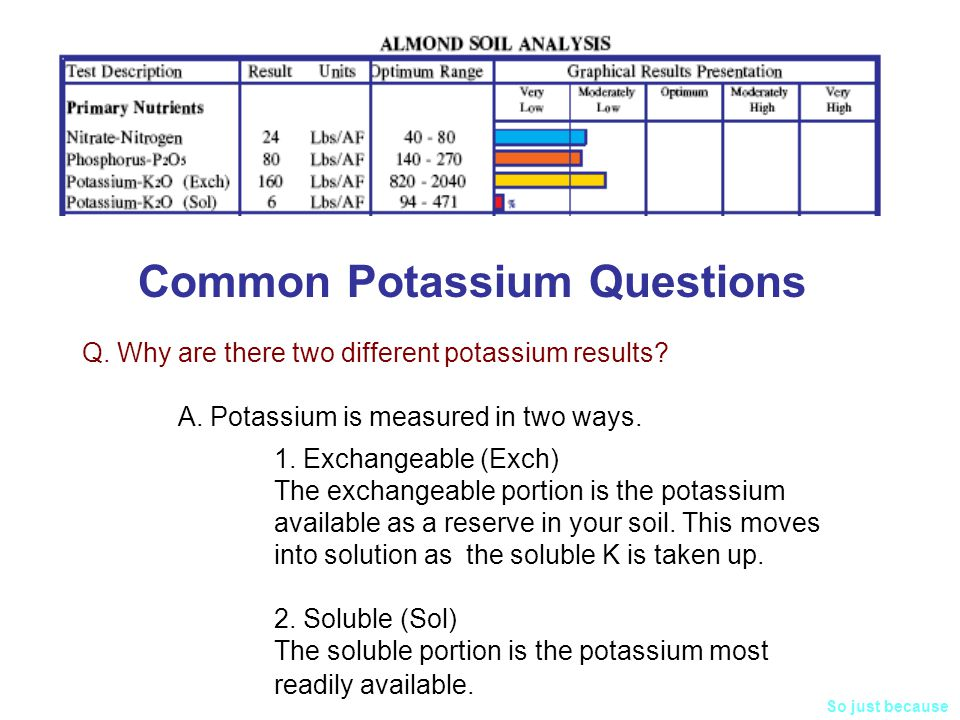Common Potassium Questions Q.Why are there two different potassium results.