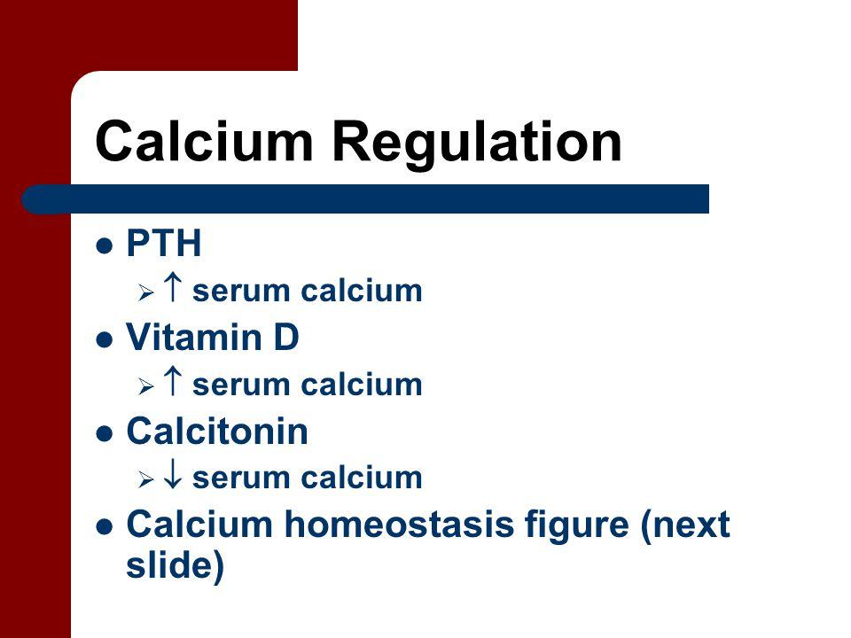 Calcium Regulation PTH   serum calcium Vitamin D   serum calcium Calcitonin   serum calcium Calcium homeostasis figure (next slide)