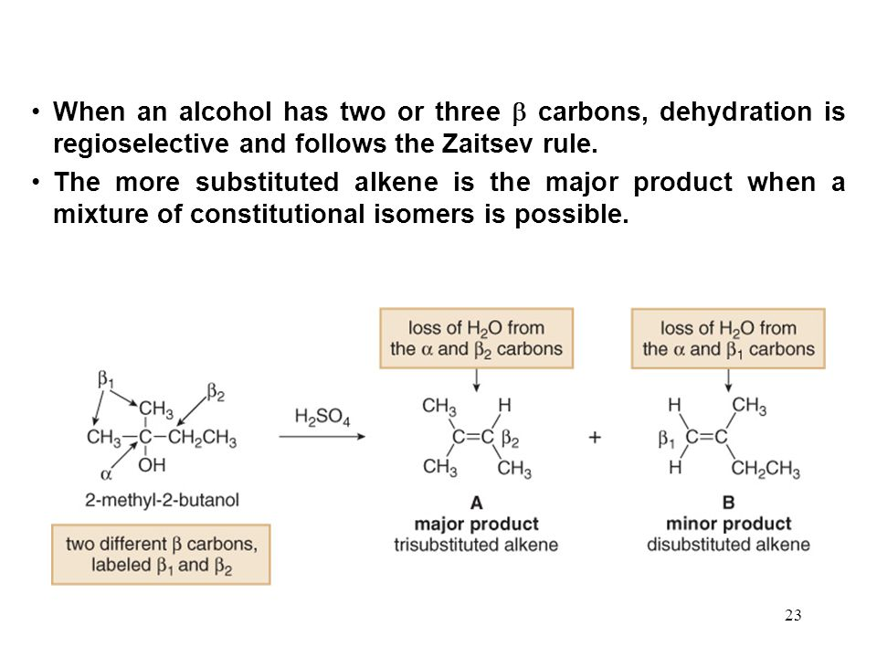 23 When an alcohol has two or three  carbons, dehydration is regioselective and follows the Zaitsev rule.