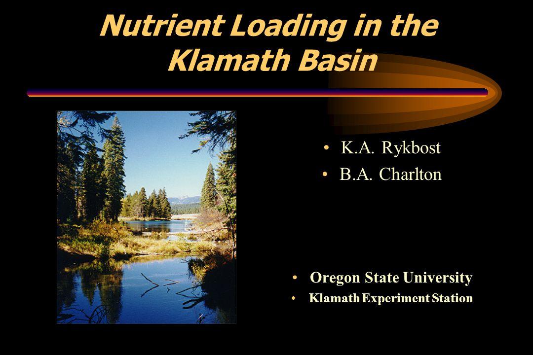 Nutrient Loading in the Klamath Basin K.A. Rykbost B.A.