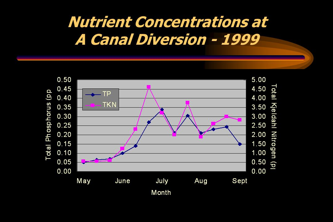 Nutrient Concentrations at A Canal Diversion - 1999