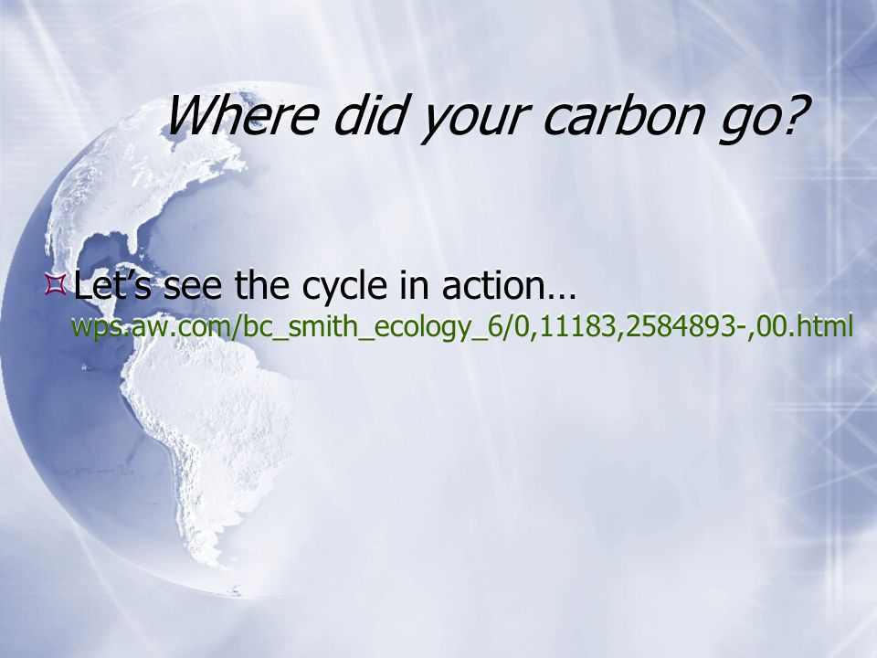 Where did your carbon go.