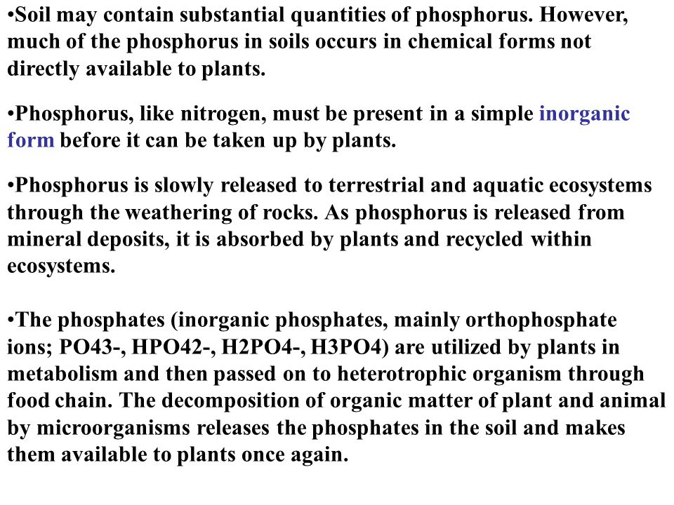 Soil may contain substantial quantities of phosphorus.